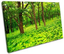 Forest Scene Landscapes - 13-2226(00B)-SG32-LO